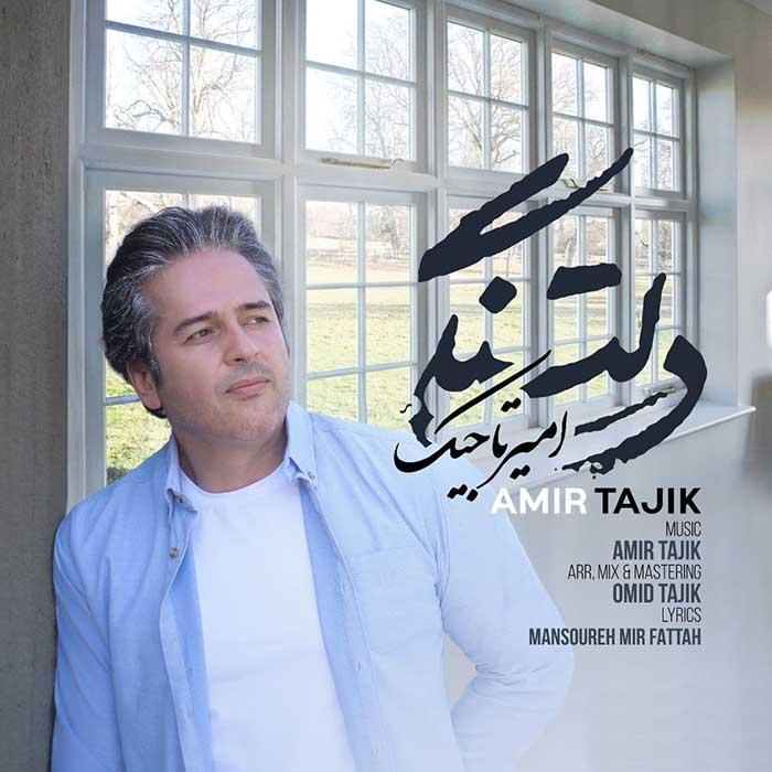 آهنگ امیر تاجیک دلتنگی دانلود کیفیت عالی MP3 + متن